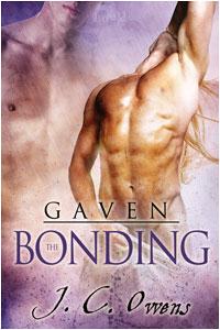 Gaven 2: The Bonding